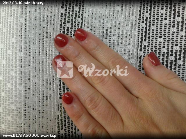 2012-03-16 mini Anety