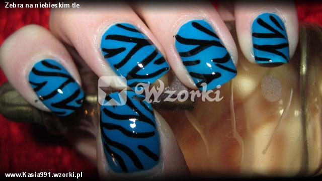 Zebra na niebieskim tle
