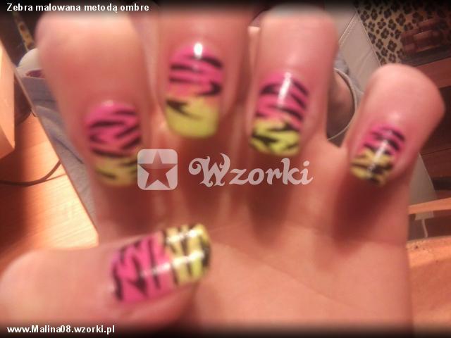 Zebra malowana metodą ombre