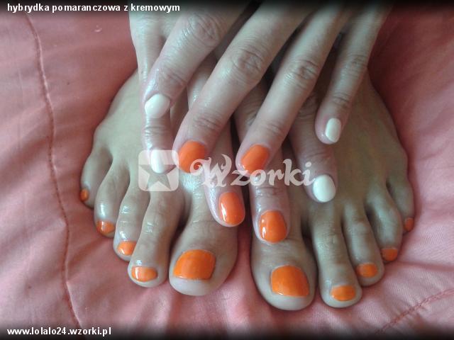 hybrydka pomaranczowa z kremowym