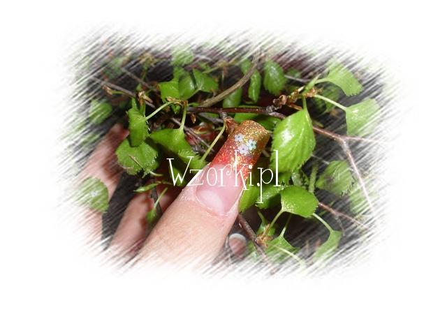 3 kwiatki brokat