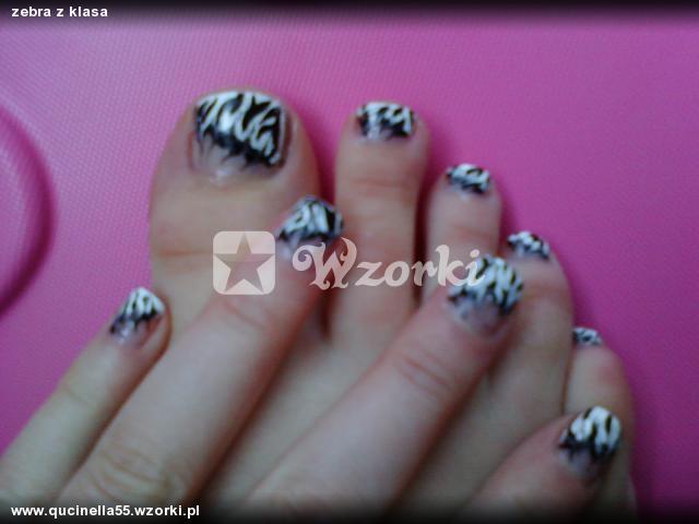 zebra z klasa