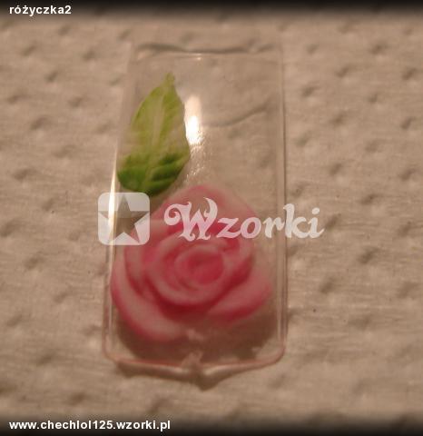 różyczka2